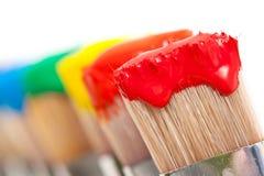 Kleurrijke verf op borstels Stock Foto