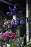 Kleurrijke verscheidenheid van bloemen stock foto