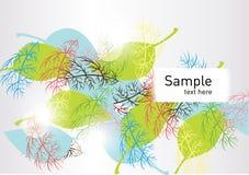 Kleurrijke verschillende bladerenachtergrond Royalty-vrije Stock Afbeeldingen