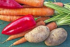 Kleurrijke verse groente Stock Foto's