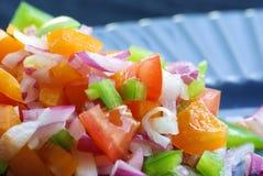 Kleurrijke verse salade stock afbeelding