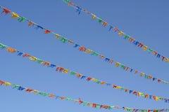 Kleurrijke vlaggen vector illustratie