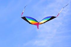 Kleurrijke Vliegervliegen Hoog tegen Blauwe Hemel op Autumn Day Royalty-vrije Stock Foto