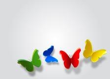 Kleurrijke Vlinders Stock Foto