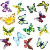 Kleurrijke Vlinders, naadloos patroon Royalty-vrije Stock Foto's