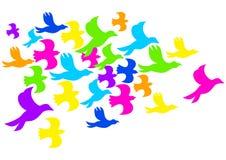 Kleurrijke Vogels royalty-vrije illustratie