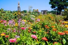 Kleurrijke vruchtbare tuin Stock Foto