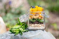 Kleurrijke vruchten en bessen in een kruik met noten en haver Buitenspruit met natuurlijke achtergrond en daglicht Gezond concept royalty-vrije stock foto
