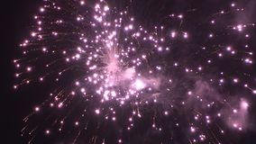 Kleurrijke vuurwerkvertoning voor viering stock video