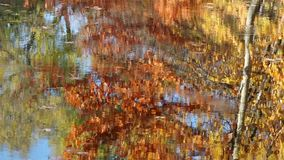 Kleurrijke waterrimpeling in de herfst stock footage