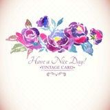 Kleurrijke Waterverf Rose Floral Greeting Card Stock Afbeeldingen