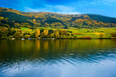 Kleurrijke wijngebieden stock afbeeldingen