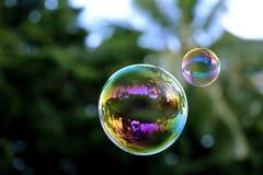 Kleurrijke zeepbels met kokospalmenbezinning, macro Royalty-vrije Stock Afbeeldingen