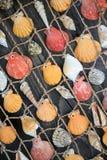 Kleurrijke zeeschelpen die op een diagonale mening van het visnetclose-up hangen Stock Afbeeldingen