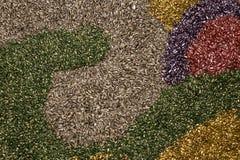 Kleurrijke zonnebloemzaden Royalty-vrije Stock Afbeeldingen