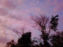 Kleurrijke zonsondergang Stock Foto's