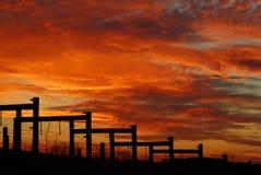 Kleurrijke Zonsondergang over Wijngaard de Zuid- van Carolina Stock Afbeelding