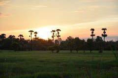Kleurrijke zonsopgang bij dageraad Stock Foto