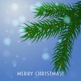 kli card julvektorn En filial av granen på en blå bakgrund vektor illustrationer