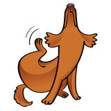 Kliande hund Arkivbild