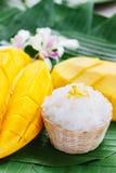 klibbig mangorice Royaltyfri Fotografi
