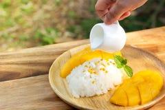 klibbig mangorice Favorit- thai efterrätt i sommarsäsong Sötsak och friskhetsmak arkivfoto