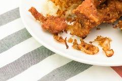 Klibbig stekt kyckling för ris arkivfoto