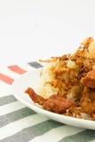 Klibbig stekt kyckling för ris royaltyfria bilder