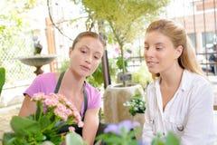 Klient patrzeje kupować kwiaty zdjęcie stock