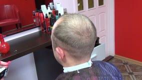 Klienta włosy rżnięta drobiażdżarka zbiory