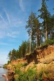 klifów jodły zdjęcie stock