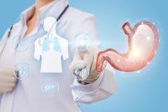 Klika dalej ikonę ludzki żołądek Obrazy Stock