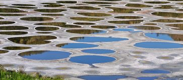 Klikuk, Spotted lake in Osoyoos, BC Stock Images