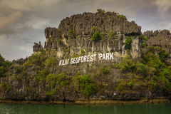 KLIM Geoforest Park. And the mangrove trees in Langkawi Island Royalty Free Stock Photo
