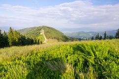 Klimczok hill in June Royalty Free Stock Image