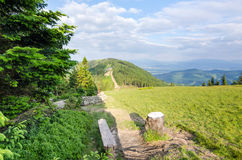Klimczok mountain top - side view Stock Photography