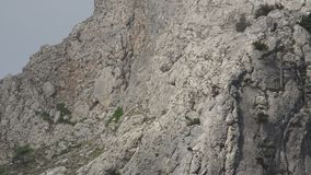 Klimmer op een rots stock videobeelden