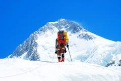 Klimmer reache de top van bergpiek Klimmer op de gletsjer Succes, vrijheid en geluk, voltooiing in bergen stock foto
