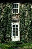 Klimop behandeld deur en venster Royalty-vrije Stock Foto's