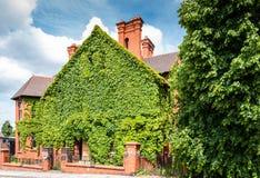 Klimop-behandeld Huis in Chester, Engeland, het UK royalty-vrije stock afbeelding
