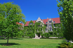 Klimop beklede zalen bij Universiteit van Chicago stock afbeelding