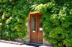 Klimop die de deur van een huis omringt royalty-vrije stock foto