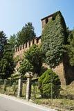 Klimop op kasteeltoren stock afbeeldingen
