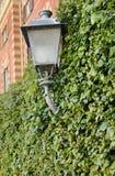 Klimop rond straatlantaarn, Como-stad stock fotografie