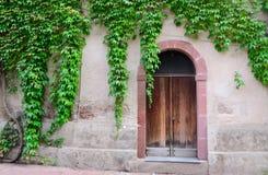 Klimopbladeren die een oude deur omringen Stock Foto