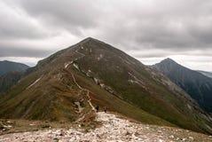 Klin e Bystra repicam no fundo em montanhas ocidentais de Tatras em Eslováquia Fotografia de Stock Royalty Free