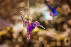 Klingelnkristallkolibri als Weihnachtsverzierung Lizenzfreie Stockbilder