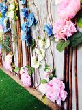 Klingerytów kwiaty Obraz Royalty Free