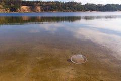 klingeryt w jeziorze fotografia royalty free