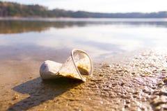 klingeryt w jeziorze fotografia stock